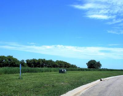 Racine MN Residential Lots & Land Sold: $31,900