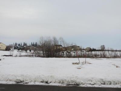 Stewartville Residential Lots & Land For Sale: 1198 Petersen Court NW