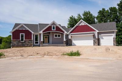 Rochester Single Family Home For Sale: 3240 Scanlan Lane NE