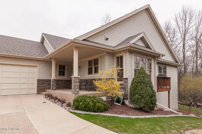 Rochester Single Family Home For Sale: 1508 Salem Court SW