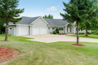 Rochester Single Family Home For Sale: 5074 Connemara Drive NE