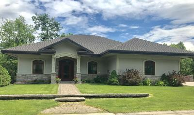 Rochester Single Family Home For Sale: 2478 Salem Heights Lane SW
