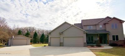 Rochester Single Family Home For Sale: 4115 Sylvan Court SE