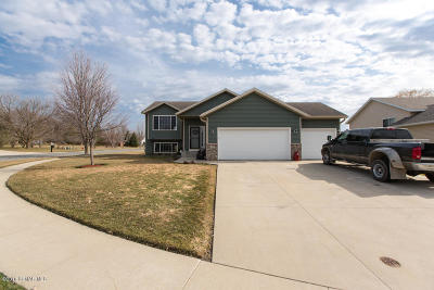 Stewartville Single Family Home For Sale: 708 Maplebrook Drive NE