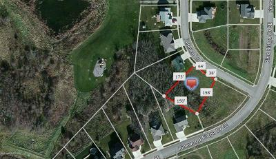 Rochester Residential Lots & Land For Sale: 2932 Peterson Lane SE