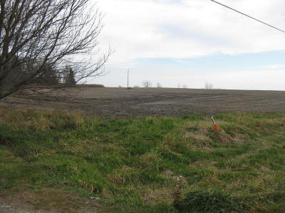 Rochester Residential Lots & Land For Sale: Tbd St. Bridgets Rd SE