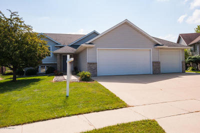 Rochester Single Family Home For Sale: 3698 David Lane SW