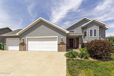 Rochester Single Family Home For Sale: 3535 Nebula Lane SW