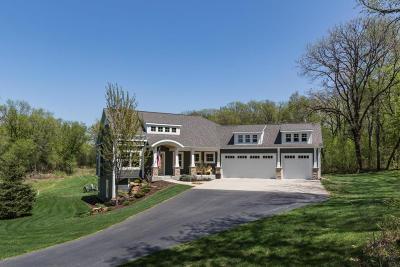 Rochester Single Family Home For Sale: 7224 Siems Lane NE