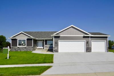 Rochester Single Family Home For Sale: 3025 20th Avenue SE