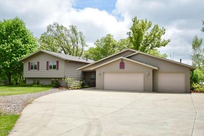 Rochester Single Family Home For Sale: 5484 Meadow Drive SE