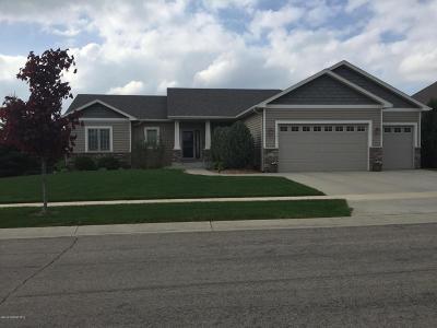 Rochester Single Family Home For Sale: 3453 Copper Point Lane NE