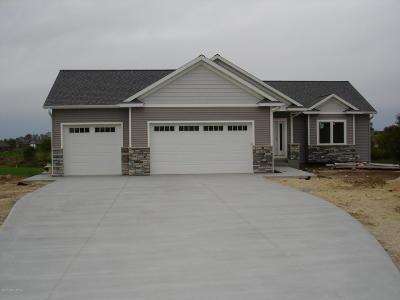 Rochester Single Family Home For Sale: 3705 Lee Lane SE