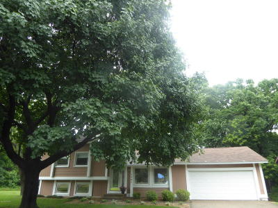 Eagan Single Family Home For Sale: 1701 Walnut Lane