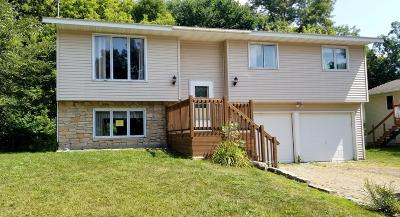 Northfield Single Family Home For Sale: 828 Linden Street N