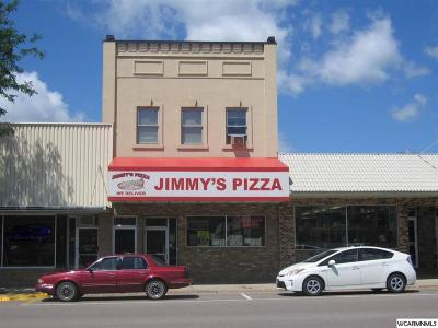 Granite Falls MN Commercial For Sale: $250,000
