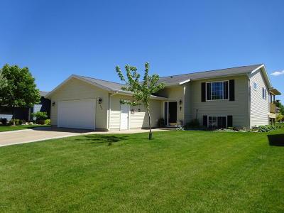Marshall Single Family Home For Sale: 506 Genesis Avenue