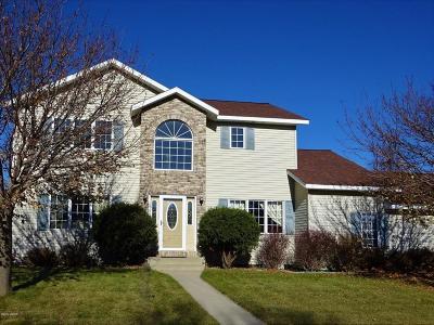 Marshall Single Family Home For Sale: 1100 Indiana Jones Avenue