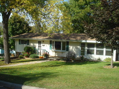 Appleton Single Family Home For Sale: 335 E Sorenson Avenue