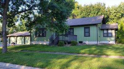 Appleton Single Family Home For Sale: 323 E Snelling Avenue