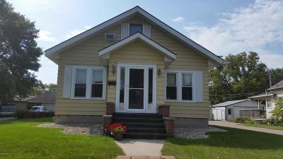 Appleton Single Family Home For Sale: 236 E Schlieman Avenue
