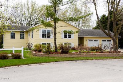 Willmar Single Family Home For Sale: 1617 Hansen Drive SW