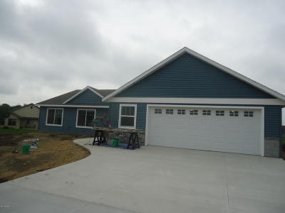 Willmar Single Family Home For Sale: 2613 3rd Avenue SE