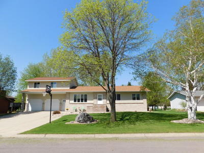 Benson Single Family Home For Sale: 706 18th Street S