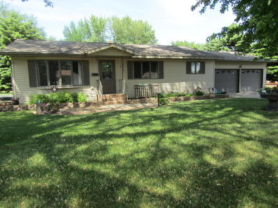 Appleton Single Family Home For Sale: 235 E Dahlstrom Avenue