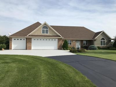 New London Single Family Home For Sale: 653 W River Drive
