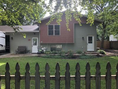 Willmar Single Family Home For Sale: 704 17th Street SE
