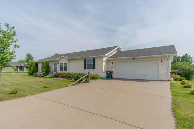 Willmar Single Family Home For Sale: 2204 Williams Parkway SW