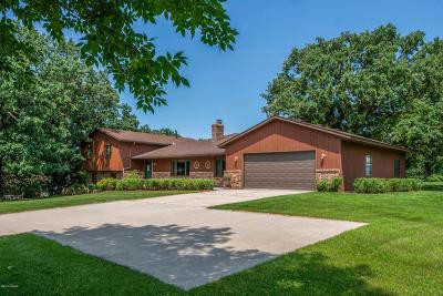 Spicer Single Family Home For Sale: 5200 109th Avenue NE