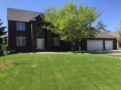 Willmar Single Family Home For Sale: 3517 Eagle Ridge Drive E