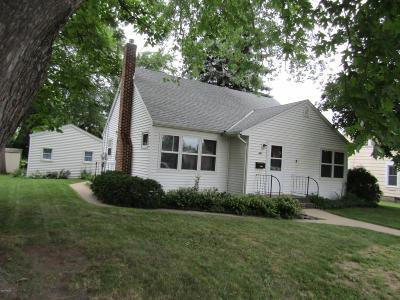 Appleton Single Family Home For Sale: 441 E Schlieman Avenue