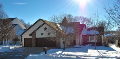 Marshall Single Family Home For Sale: 408 E Lyon Street
