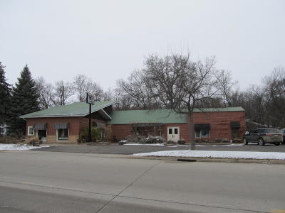 Granite Falls Commercial For Sale: 176 Hwy. 212 E