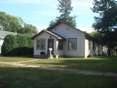 Appleton Single Family Home For Sale: 236 E Rooney Avenue