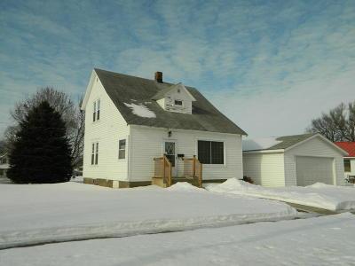 Appleton Single Family Home For Sale: 127 N Gaulke Street