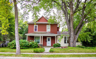 Willmar Single Family Home For Sale: 903 3rd Street SE