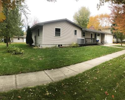 Willmar Single Family Home For Sale: 1010 5 Street SW