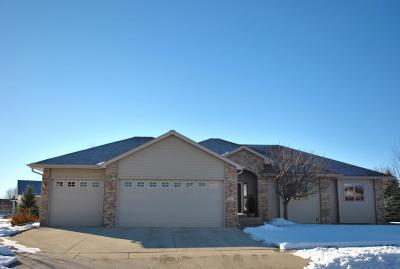 Marshall Single Family Home For Sale: 202 E Thomas Avenue