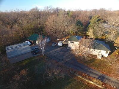 Spicer Single Family Home For Sale: 6825 132nd Avenue NE