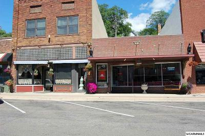 Commercial For Sale: 110 S 1st Street