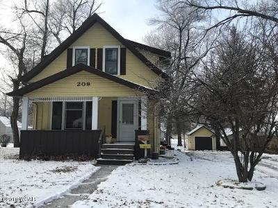 Willmar Single Family Home For Sale: 209 Manila Street NE