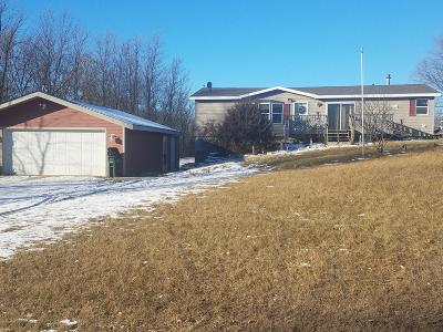 Spicer Single Family Home For Sale: 15210 72nd Street NE