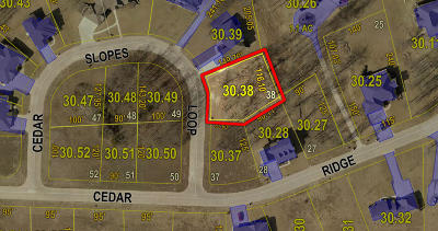 Residential Lots & Land For Sale: LOT 38 CEDAR SLOPES
