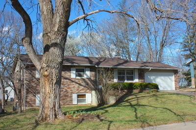 Columbia Single Family Home For Sale: 2615 MALLARD Ct