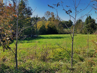 Residential Lots & Land For Sale: LIDA St