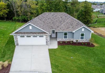 Columbia Single Family Home For Sale: 4729 STONE MOUNTAIN Pky